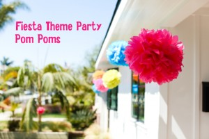 Fiesta Theme Party Pom Poms