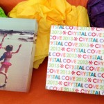 Erin Condren Acrylic Photo Blocks