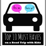 Top 10 Must Haves on a Road Trip with Kids