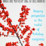 holiday perspective