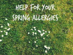 help for your spring allergies