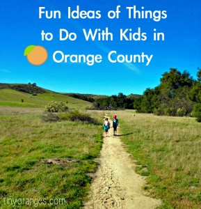 fun ideas of things to do with kids in orange county